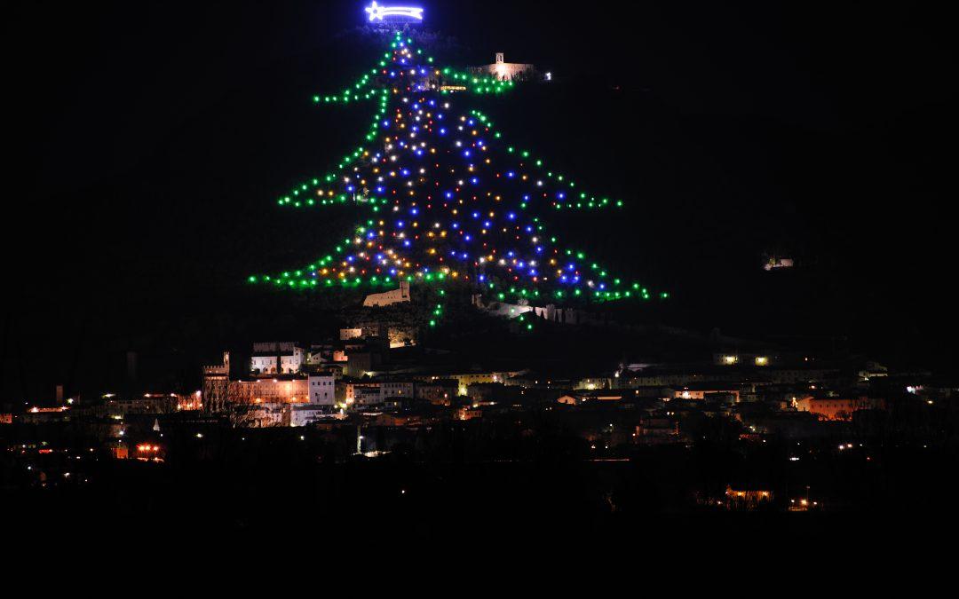 Albero Di Natale Gubbio.L Albero Di Natale Piu Grande Del Mondo E A Gubbio Comitato Linguistico Perugia