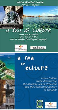 A sea of culture