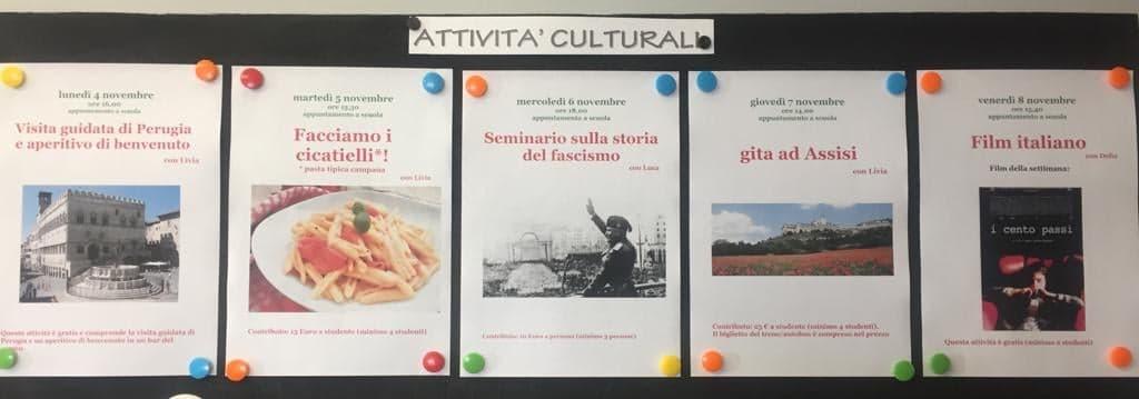 Le attività culturali della settimana dal 4 all'8 novembre 2019!