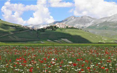 Luoghi dell'Umbria: Castelluccio di Norcia e la piana di Castelluccio